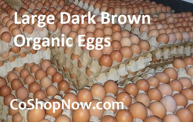 Large Brown Organic Eggs BGC