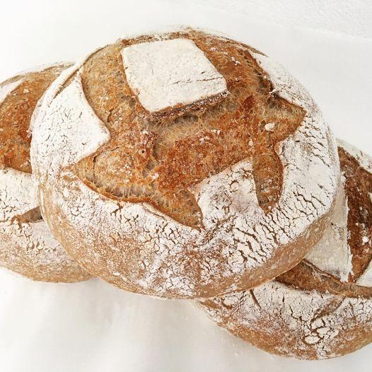 Sourdough bread, Big